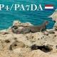 PA7DA actief vanaf het eiland Aruba als P4/PA7DA